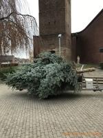 2020-11-28_Weihnachtsbaum_01