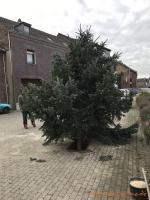 2020-11-28_Weihnachtsbaum_02