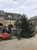2020-11-28_Weihnachtsbaum_06