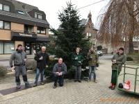 2020-11-28_Weihnachtsbaum_07