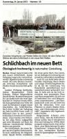 2013-01-24_DN_Schlichbacheroeffnung